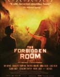 Yasaklı Oda | The Forbidden Room