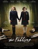 Düşüş | The Falling