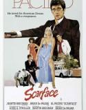 Yaralı Yüz   Scarface