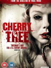 Cherry Tree izle |1080p|