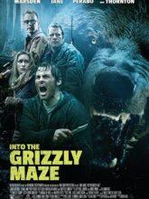 Grizzly izle