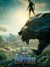 Kara Panter | Black Panther