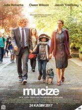 Mucize | Wonder