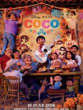 Koko | Coco