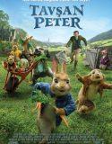 Tavşan Peter | Petter Rabbit